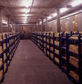 Središnje banke svijeta ubrzale uvećavanje svojih zlatnih zaliha